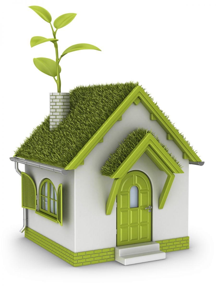 casa-ecologica